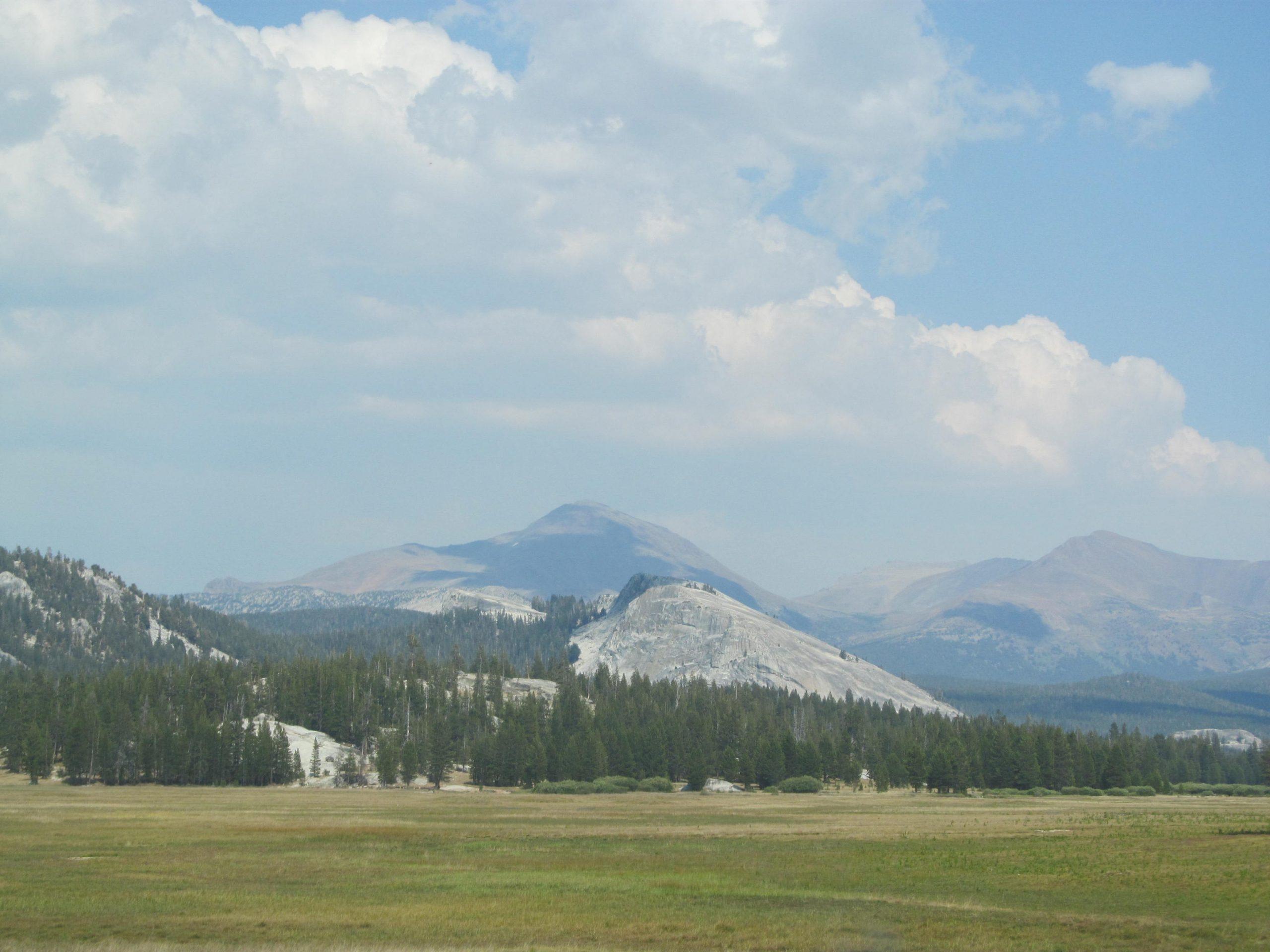 Inside Yosemite