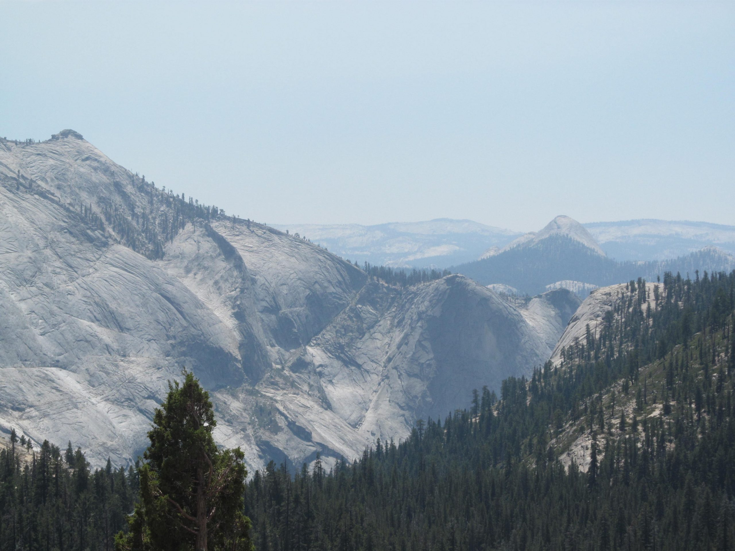 The view from Big Oak Flat Road in Yosemite