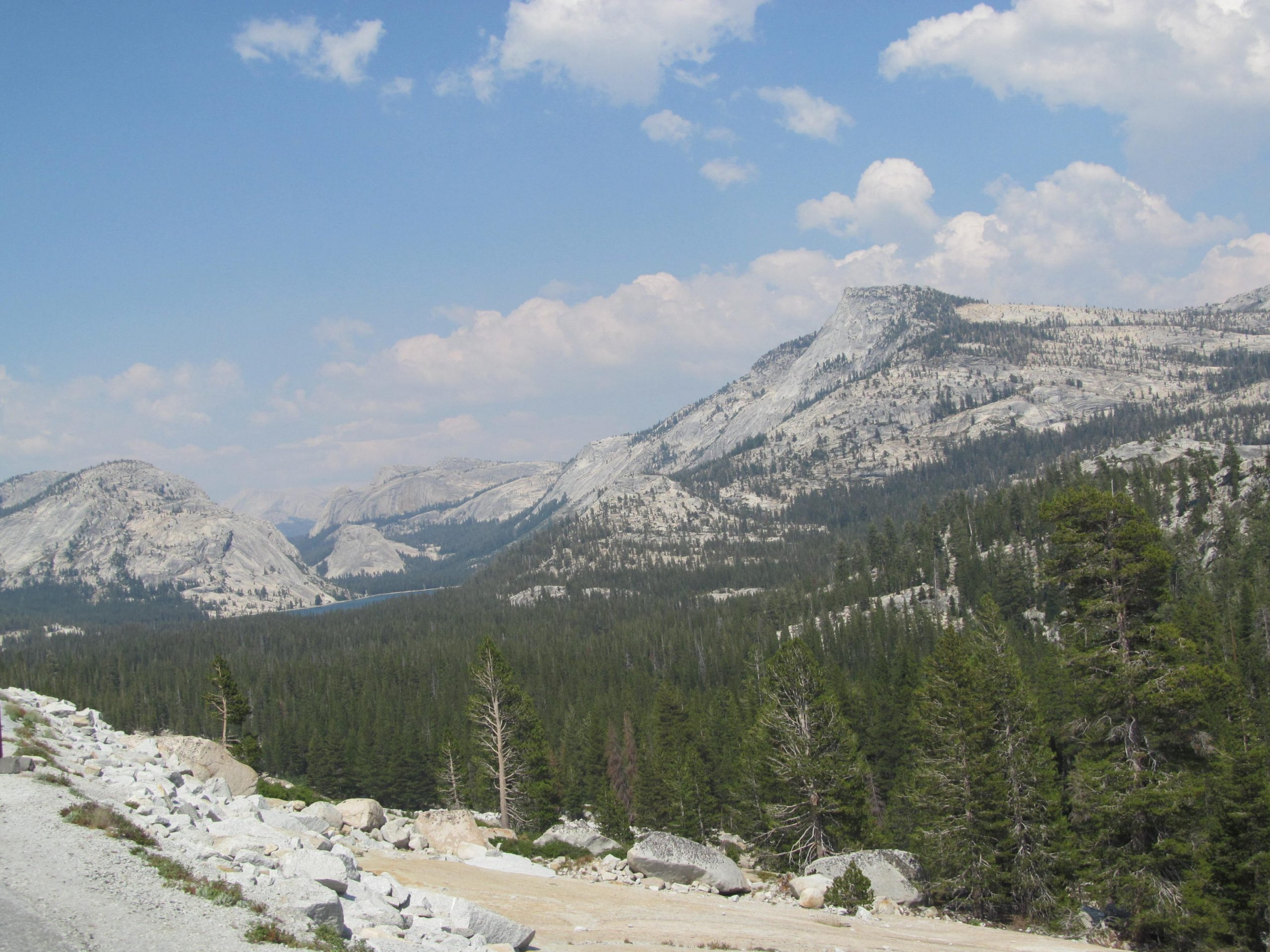 Driving through Yosemite