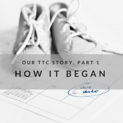 Our TTC Story, Part 1: How It Began