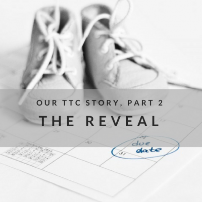 Our TTC Story, Part 2: The Reveal