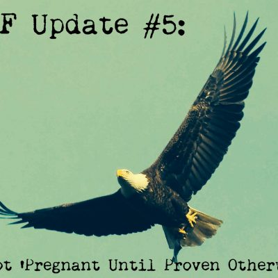 """IVF Update #5 – Not """"Pregnant Until Proven Otherwise"""""""