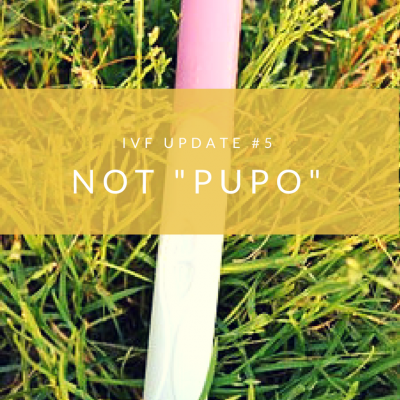 "IVF Update #5 – Not ""Pregnant Until Proven Otherwise"""