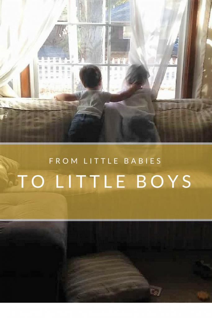 babies to boys twins