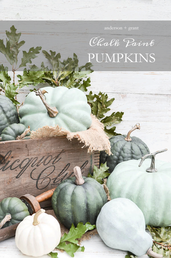 Chalk painted pumpkins - Decorating your home for autumn doesn't have to break your bank. Here are 25 of the prettiest DIY Fall Decor Projects that you can create yourself for a fraction of the cost.  These are my favorite picks for the best rustic farmhouse decor for fall!