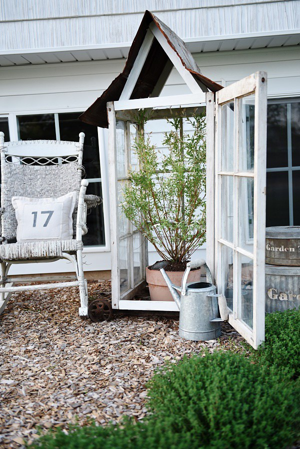 Tall old windows repurposed as a small greenhouse for a garden tree, idea for decorating with vintage windows
