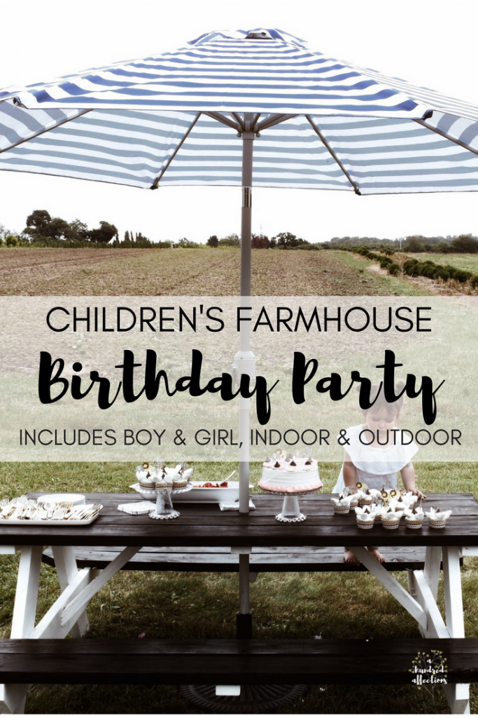childrens farmhouse birthday party indoor outdoor boy girl (3)