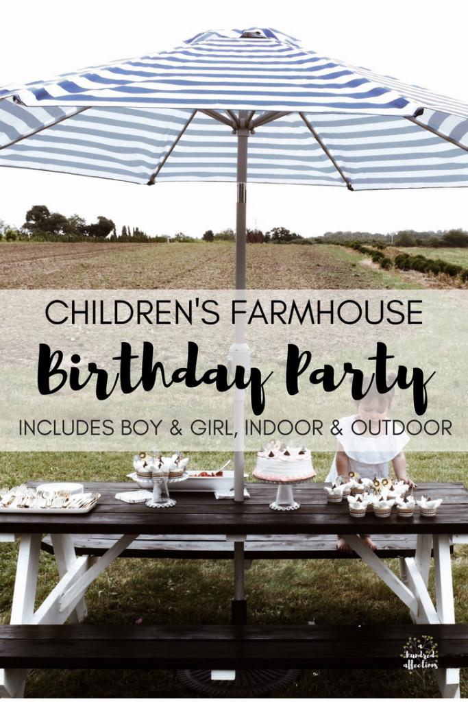 childrens farmhouse birthday party indoor outdoor boy girl (3)