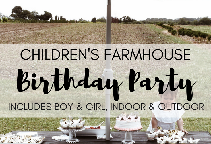 Children's Farmhouse Birthday Party on a Budget (includes Boy & Girl, Indoor & Outdoor)