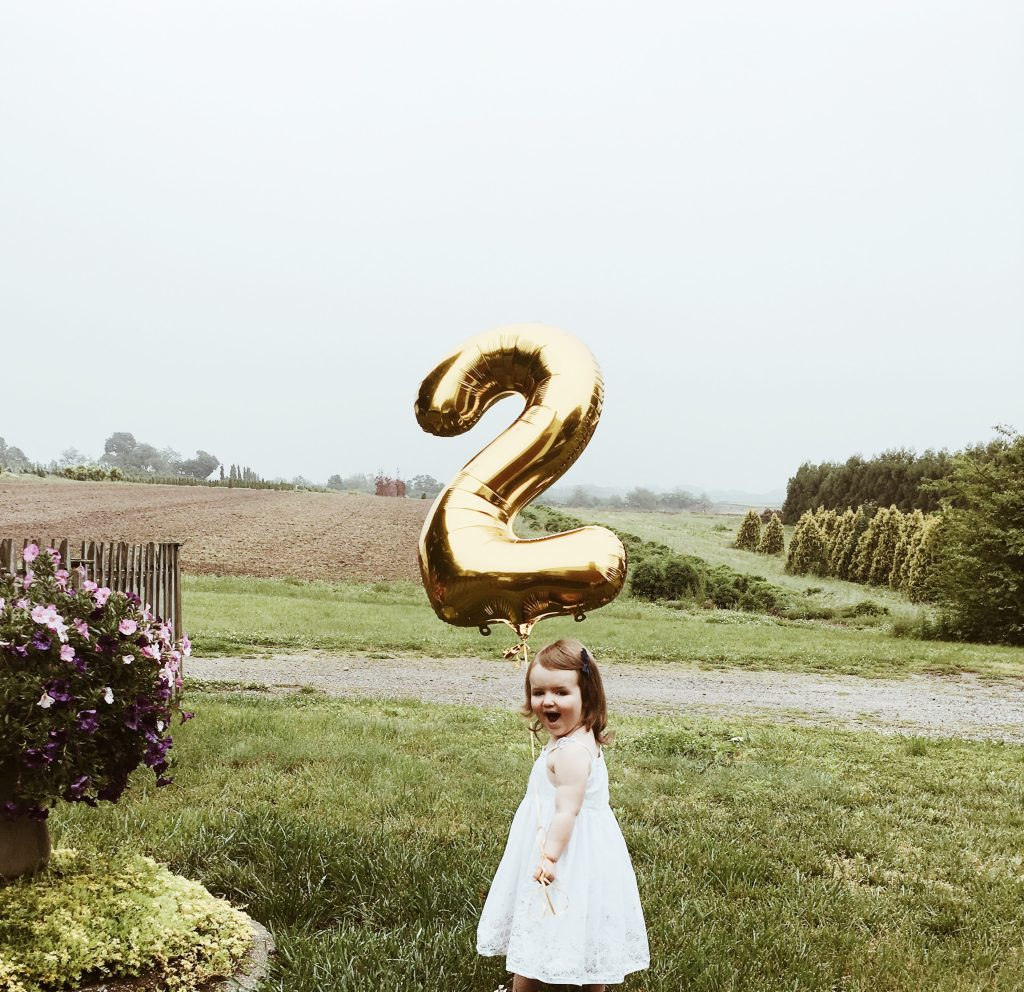 birthday balloon + farmhouse birthday party on a budget boys girls indoor outdoor