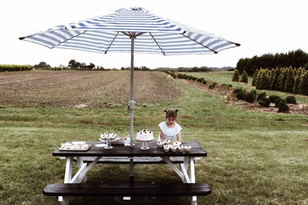 farm picnic table + farmhouse birthday party on a budget boys girls indoor outdoor