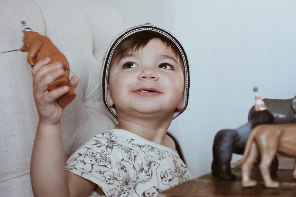 childrens farmhouse birthday party indoor outdoor boy girl