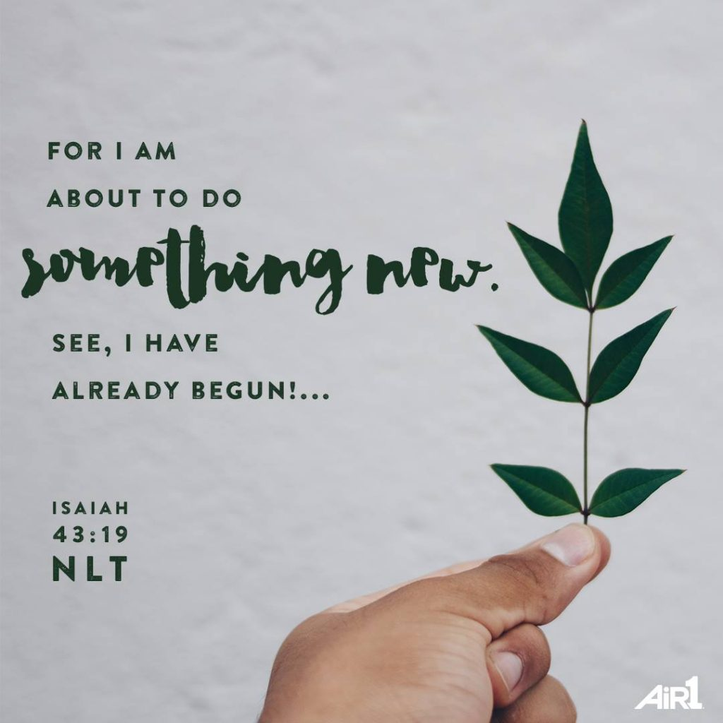 Isaiah 43:19 wall art About to do something new