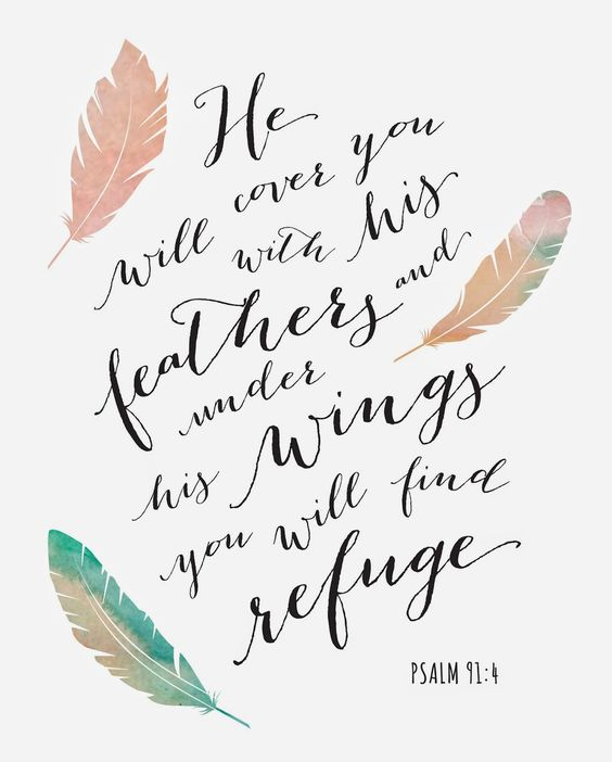 "Psalm 91:4 wall art with feathers ""He will cover you with His feathers"""