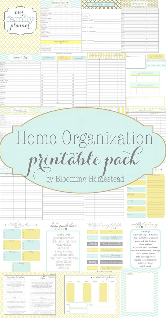 photo about Free Organization Printables named 21 Absolutely free Printables towards Assist On your own Prepare Your Lifestyle - A