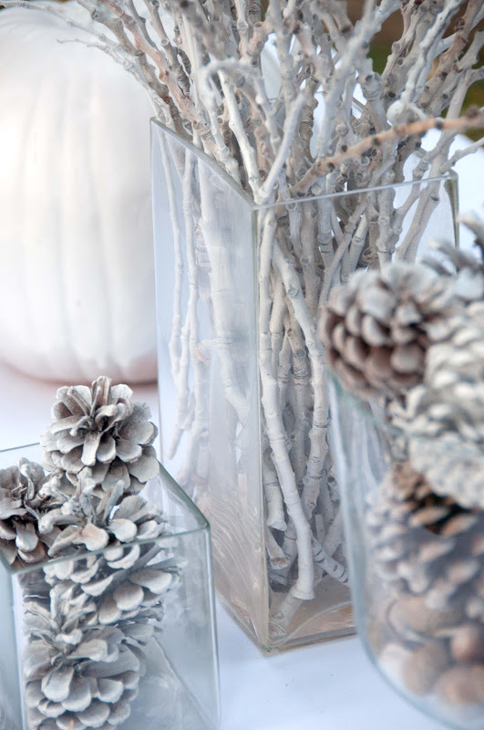Square vases filled with white pine cones and white branches