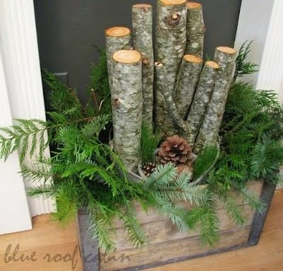 Wooden logs, pine green, evergreens, pine cones in rustic crate