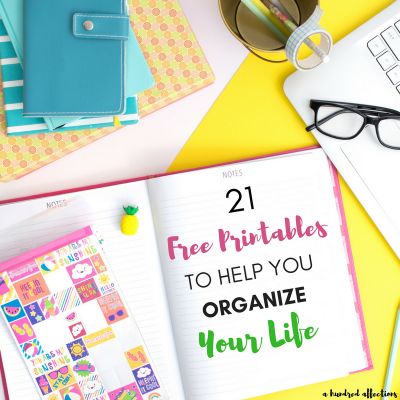 If you need to organize your daily/weekly/monthly planning, goals, finances, eating, exercise, meal-planning and more - there is a free printable for you.