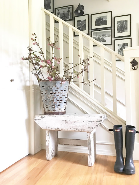 Small rustic chippy rustic entryway bench with olive bucket filled with blooming cherry blossom branches, with rain boots, perfect ideas for rustic farmhouse spring home decor