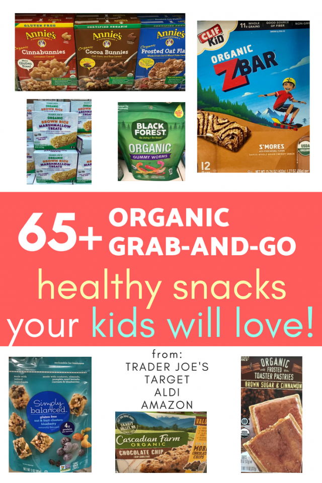 Are you looking for healthy, on-the-go snacks! Keep reading to find 65+ healthy snacks kids love! All grab-and-go and organic!