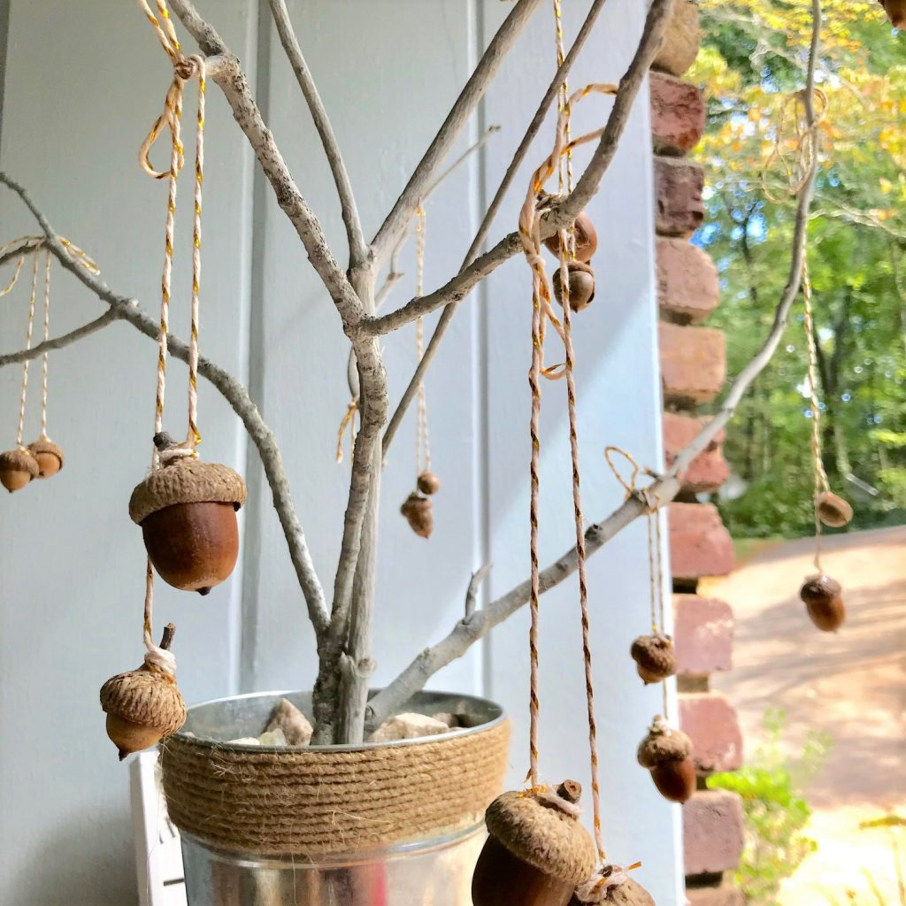 DIY acorn tree close up of acorns hanging on bakers twin on branches