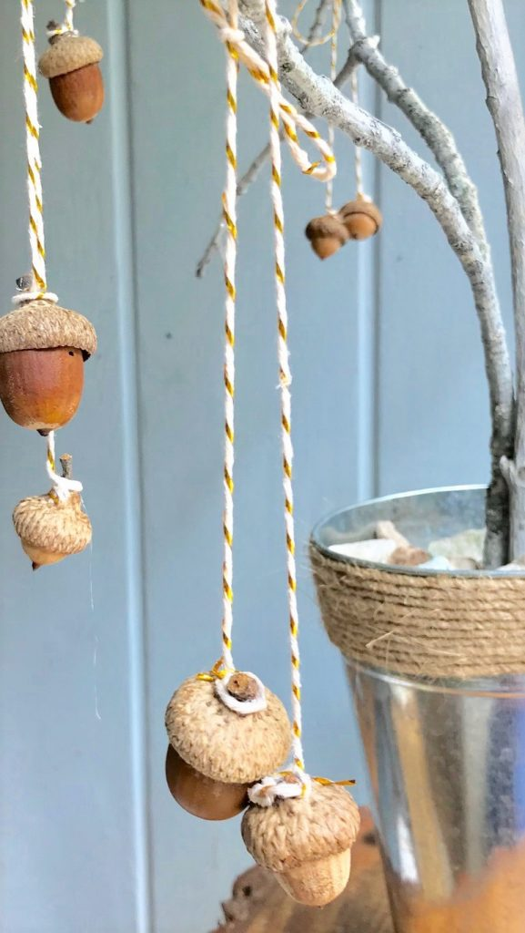 acorns with bakers twine hanging on branches of DIY fall acorn tree decor project