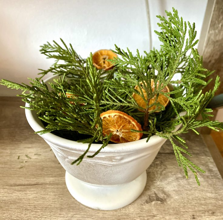 cream colored bowl with cypress branches and dried oranges